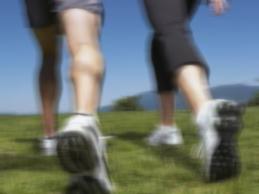 適度な運動を習慣